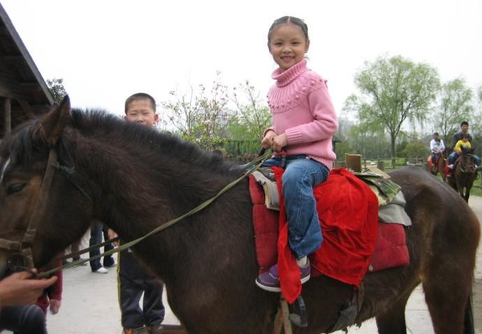 野生动物园骑马场